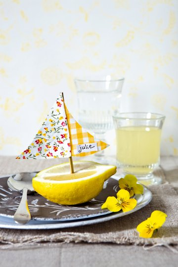 Lemon Sailboat Name Card